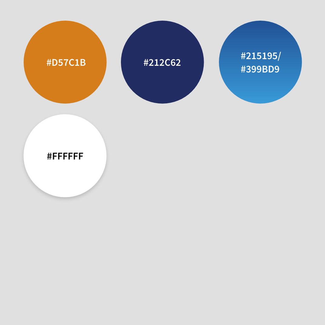 Ansicht der Farben mit HEX-Codes der Gout-Website von der Healthcare Werbeagentur mcs